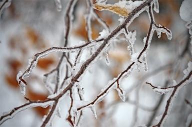 cold_3