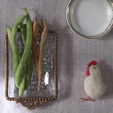 chicken_beans_lr