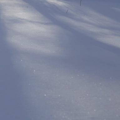 start_snow
